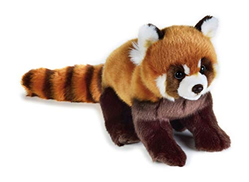 NATIONAL GEOGRAPHIC- roter Panda Peluche, Color marrón (9770716)