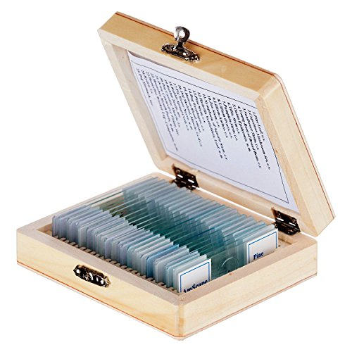 AmScope - 25pc Prepared Glass Microscope Slides in Wood Storage Case - Plant, Fungus, Insect and...